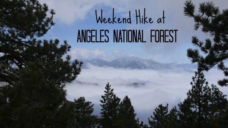 weekend-hike-at-angeles-national-forest