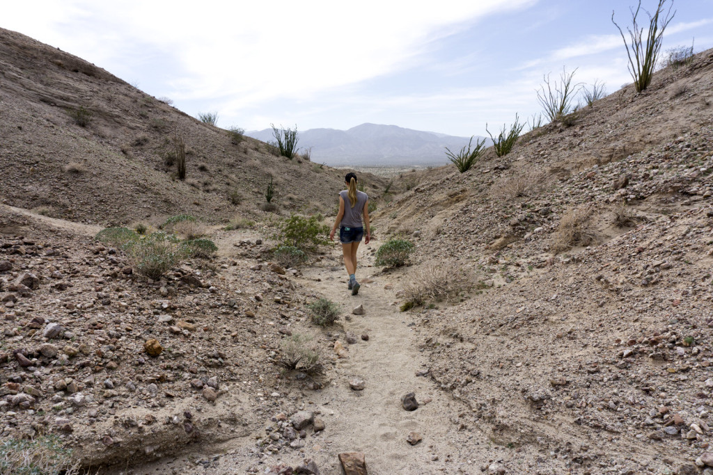 girl in the canyon in anza borrego desert