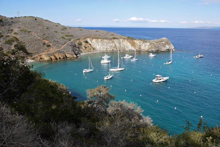 Boats at Catalina Island harbour