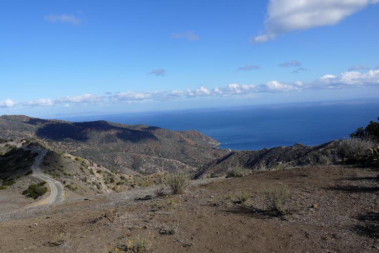 View from the tp of the mountain of Catalina Island
