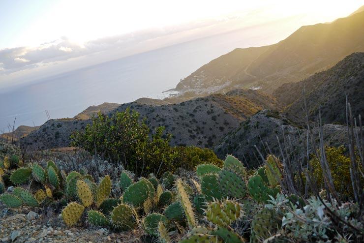 Sunrise at Catalina Island.