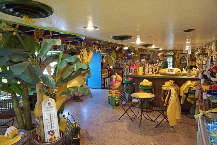 Inside of Interantional Banana Musesum