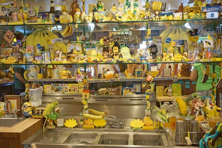 Banana Museum exposition